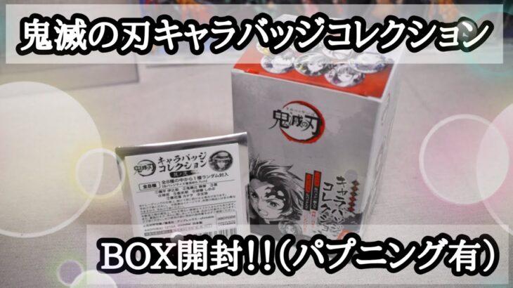 鬼滅の刃キャラバッジコレクションBOX開封!!でパプニング有り💦