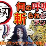 【鬼滅の刃】アニメクイズ 何の呼吸?(柱+α)斬られ心地 後藤が地獄に行ってアンケートを取ってきました 無限列車 Demon Slayer Kimetsu no Yaiba 漫画 Anime quiz