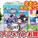 【鬼滅の刃】1万円分の新作グッズ開封!2大人気シリーズをボックス開封!!【アニメイトで買える】