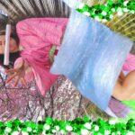 【鬼滅の刃】お花見ラップマン🌸ラップカイザーがねずこを誘拐!?無限ラップ列車からの脱出〜Clingfilm challenge〜