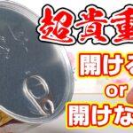 【鬼滅の刃】開けたらもったいない?原作グッズだけの貴重な『缶詰』が手に入った!開封する?しない?