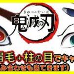 【鬼滅の刃】アニメクイズ  目+眉毛クイズ 柱や鬼の目と眉毛が合体してます 全14問 無限列車大ヒット Demon Slayer Kimetsu no Yaiba 漫画 Anime quiz