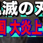 【外国人 懐疑】鬼滅の刃の耳飾り 韓国で猛批判!!【kaitube カイチューブ 】