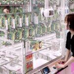 ヲタク系女子が漫画・アニメ系縛りで1万円クレーンゲームチャレンジw!!鬼滅の刃、SPY FAMILY…