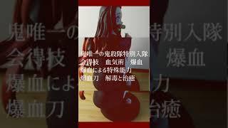 #鬼滅の刃#フィギュア紹介#竈門禰豆子#アニメ好き